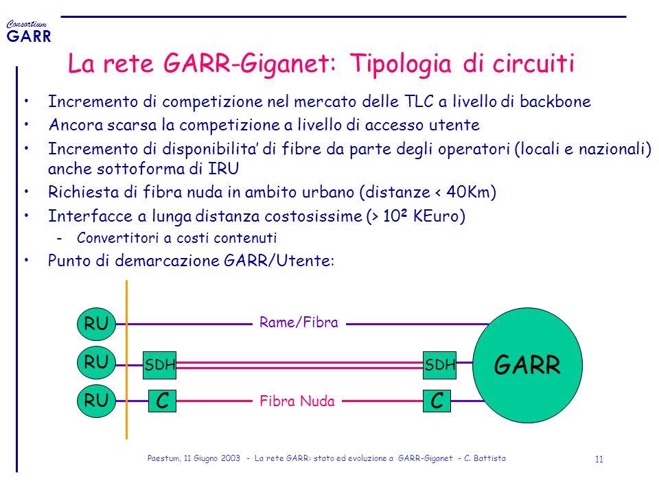 La rete GARR-Giganet: Tipologia di circuiti