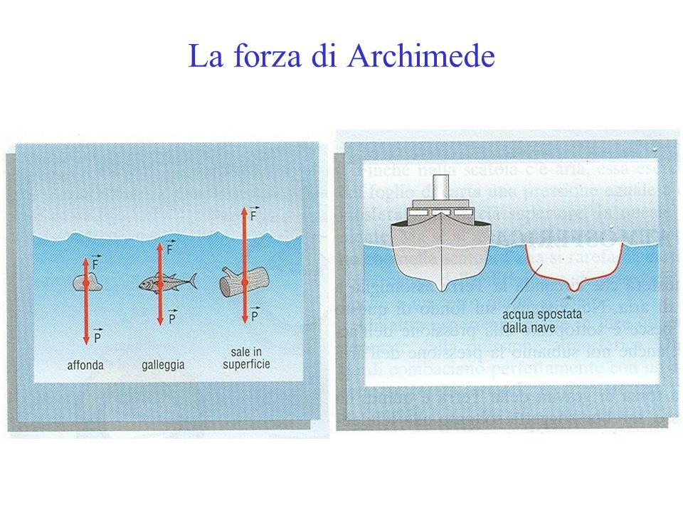 La forza di Archimede
