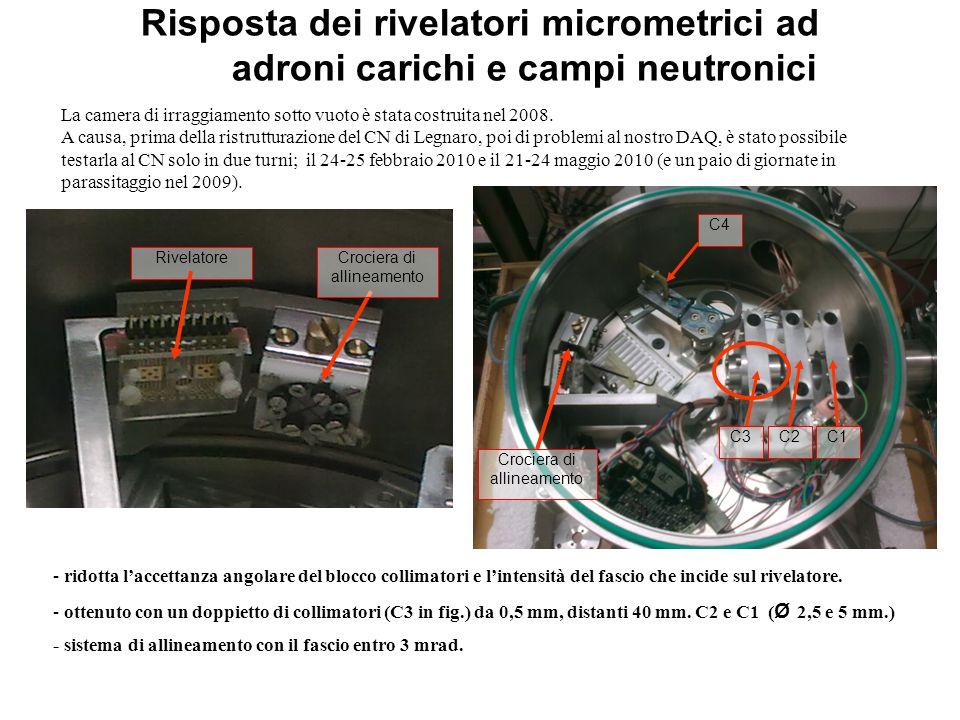 Risposta dei rivelatori micrometrici ad adroni carichi e campi neutronici