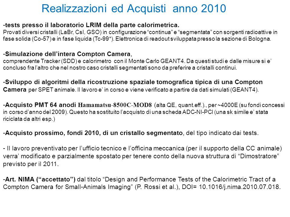 Realizzazioni ed Acquisti anno 2010