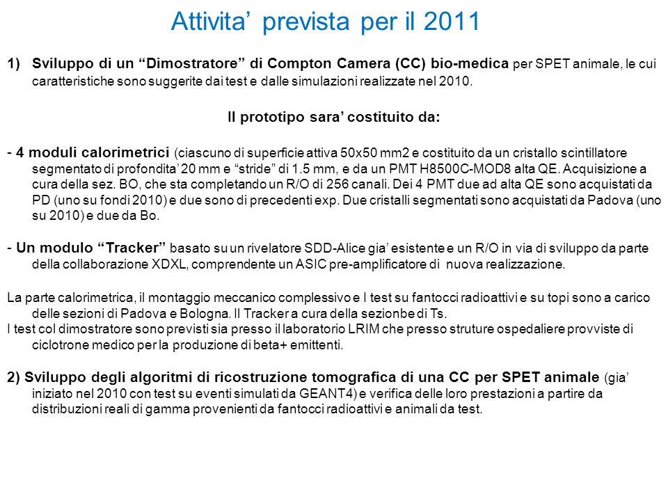 Attivita' prevista per il 2011