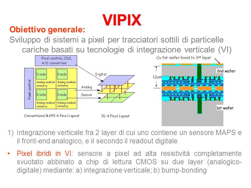 VIPIX Obiettivo generale: