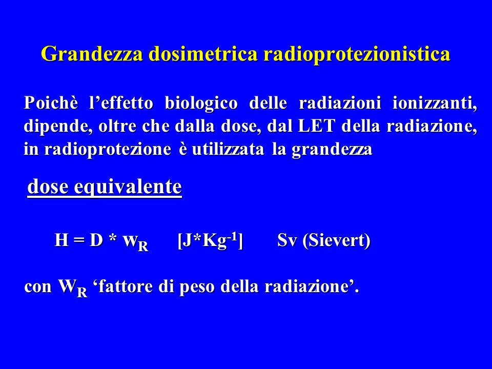 Grandezza dosimetrica radioprotezionistica