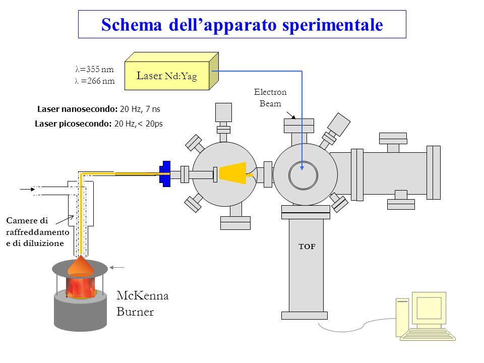 Schema dell'apparato sperimentale