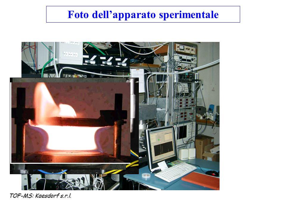 Foto dell'apparato sperimentale