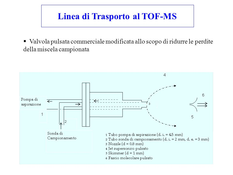 Linea di Trasporto al TOF-MS