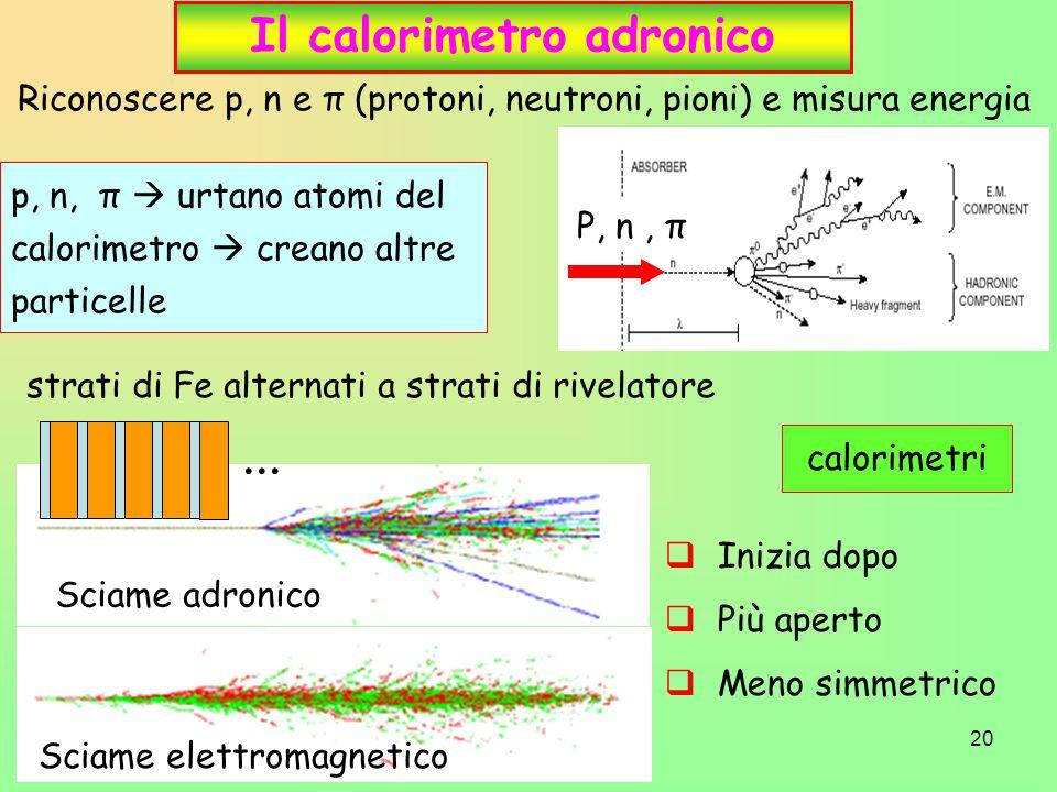 Il calorimetro adronico