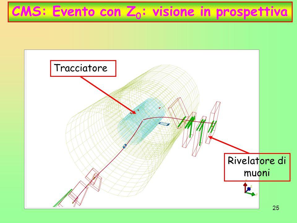 CMS: Evento con Z0: visione in prospettiva