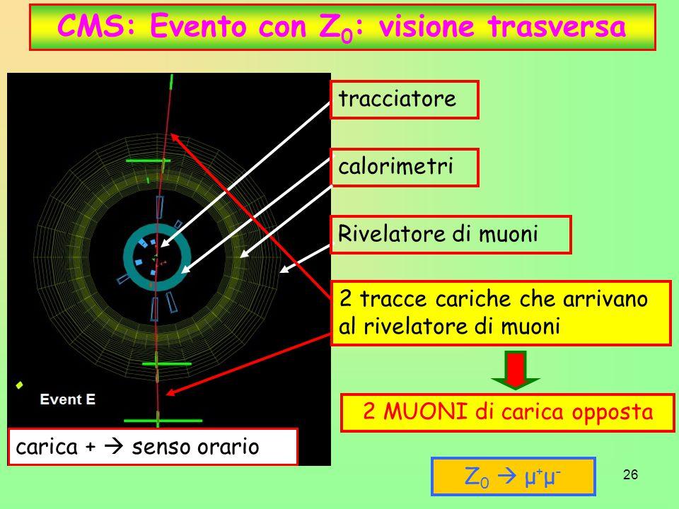 CMS: Evento con Z0: visione trasversa