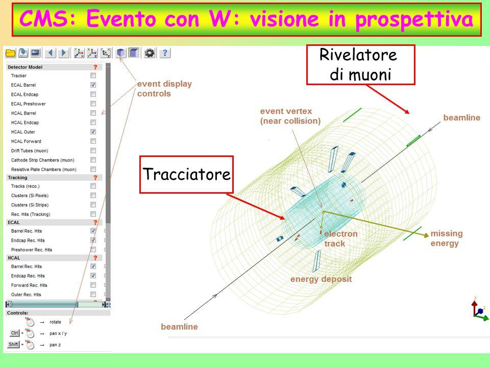 CMS: Evento con W: visione in prospettiva