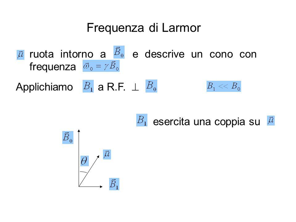 Frequenza di Larmor ruota intorno a e descrive un cono con frequenza