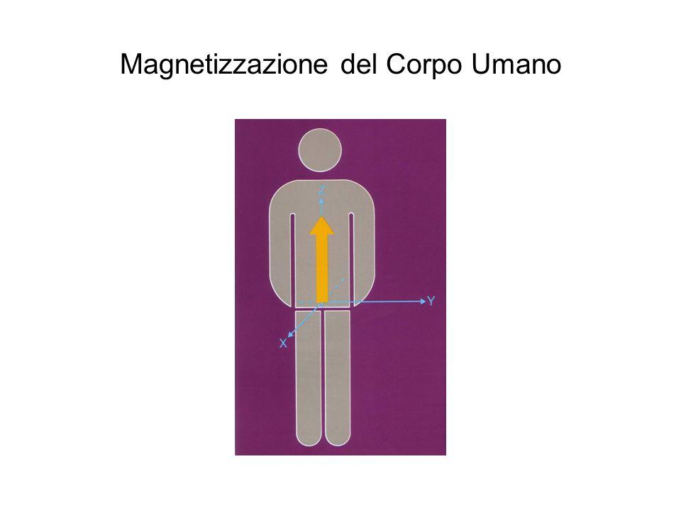 Magnetizzazione del Corpo Umano
