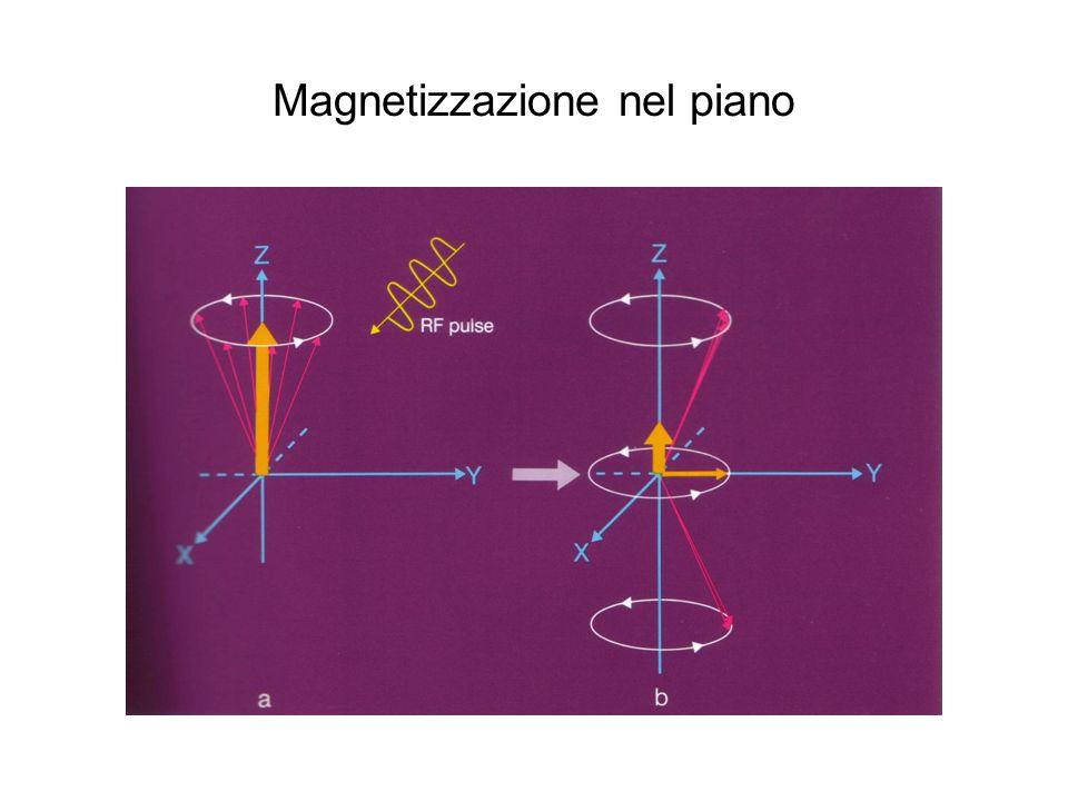 Magnetizzazione nel piano