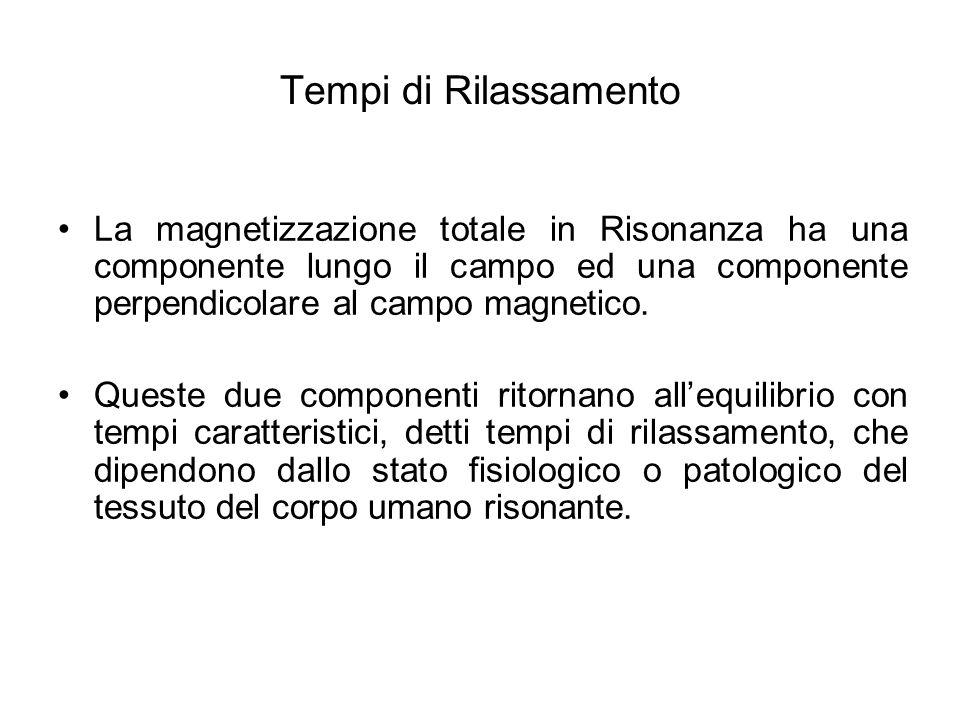 Tempi di Rilassamento La magnetizzazione totale in Risonanza ha una componente lungo il campo ed una componente perpendicolare al campo magnetico.