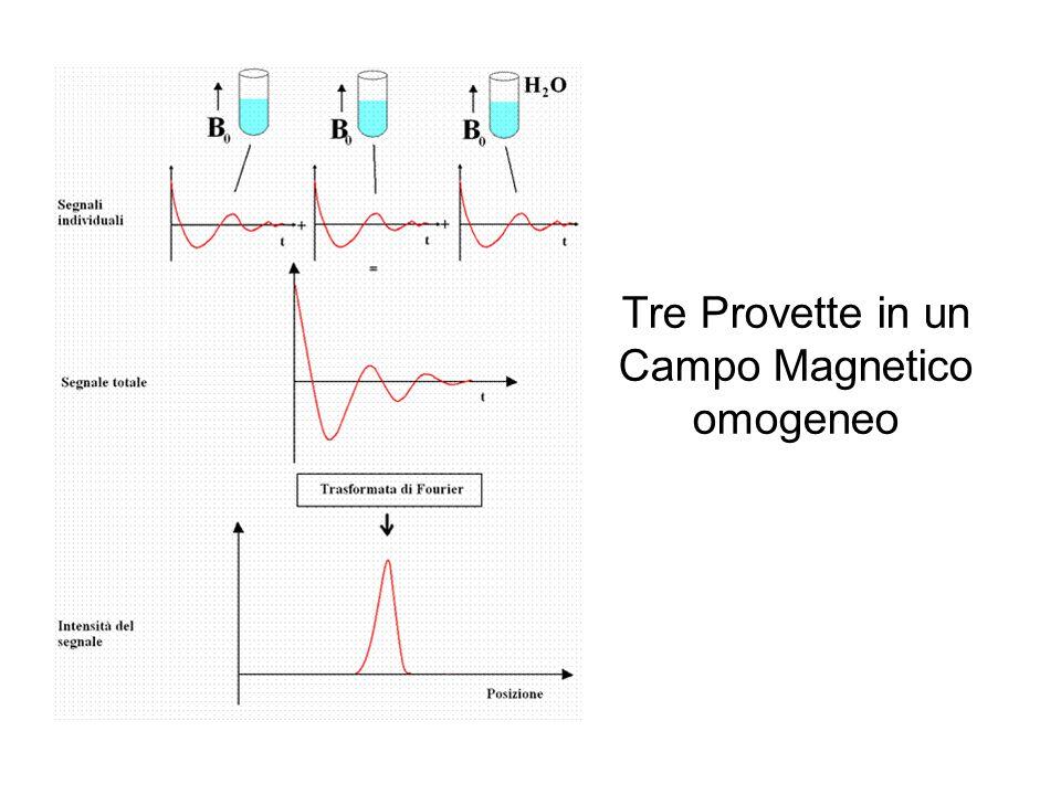Tre Provette in un Campo Magnetico omogeneo