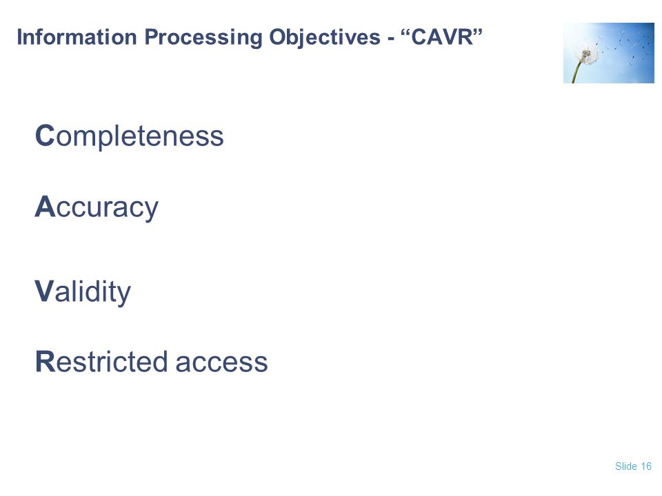 Information Processing Objectives - CAVR