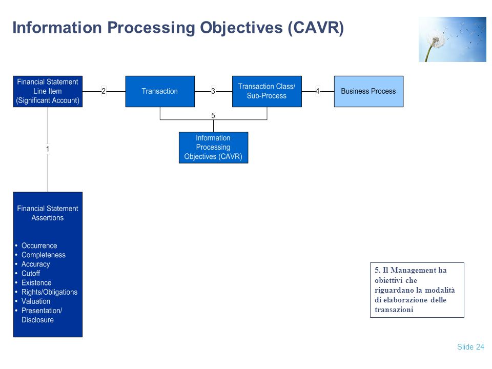 Information Processing Objectives (CAVR)