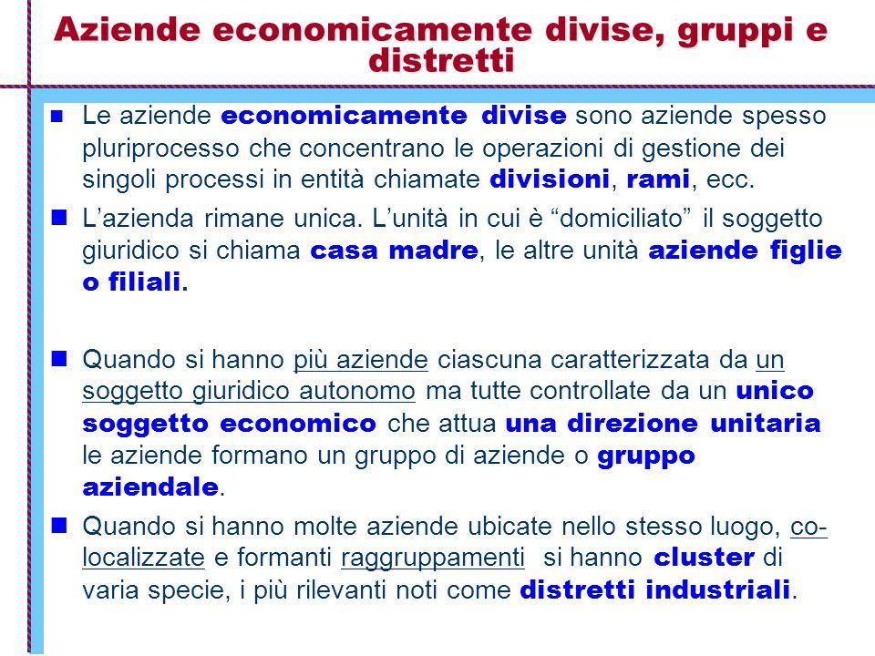Aziende economicamente divise, gruppi e distretti