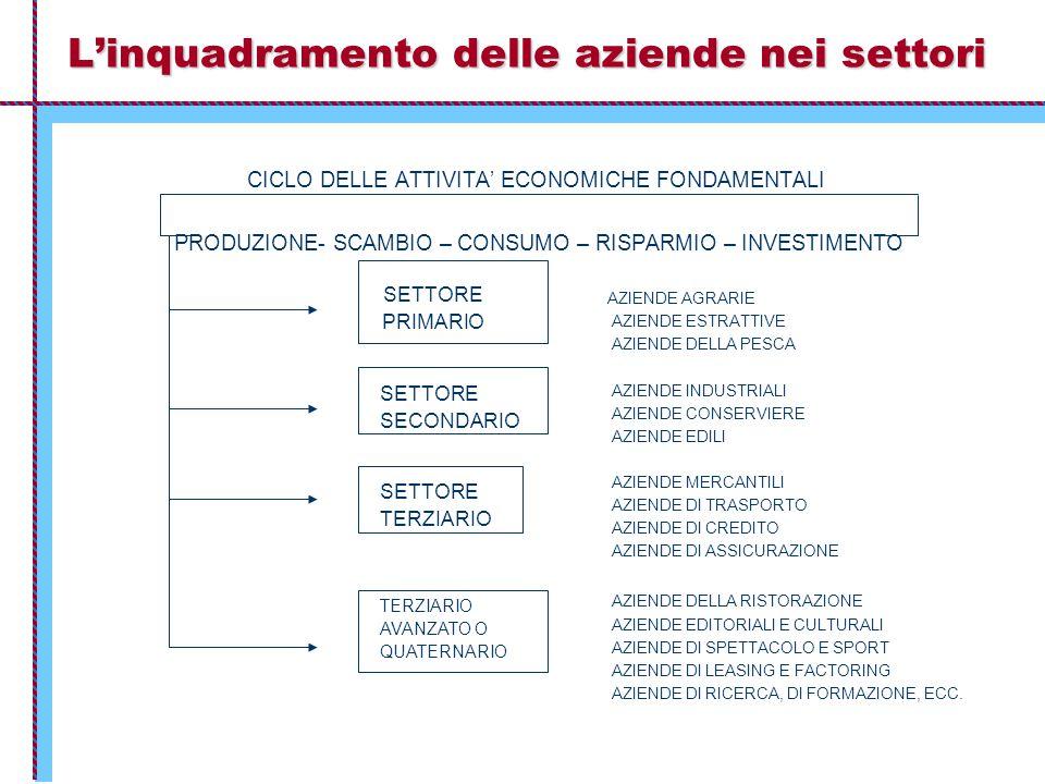L'inquadramento delle aziende nei settori