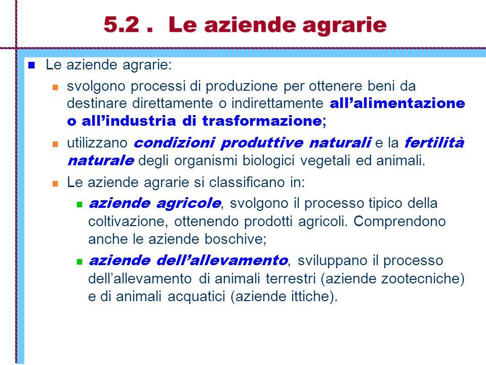 5.2 . Le aziende agrarie Le aziende agrarie: