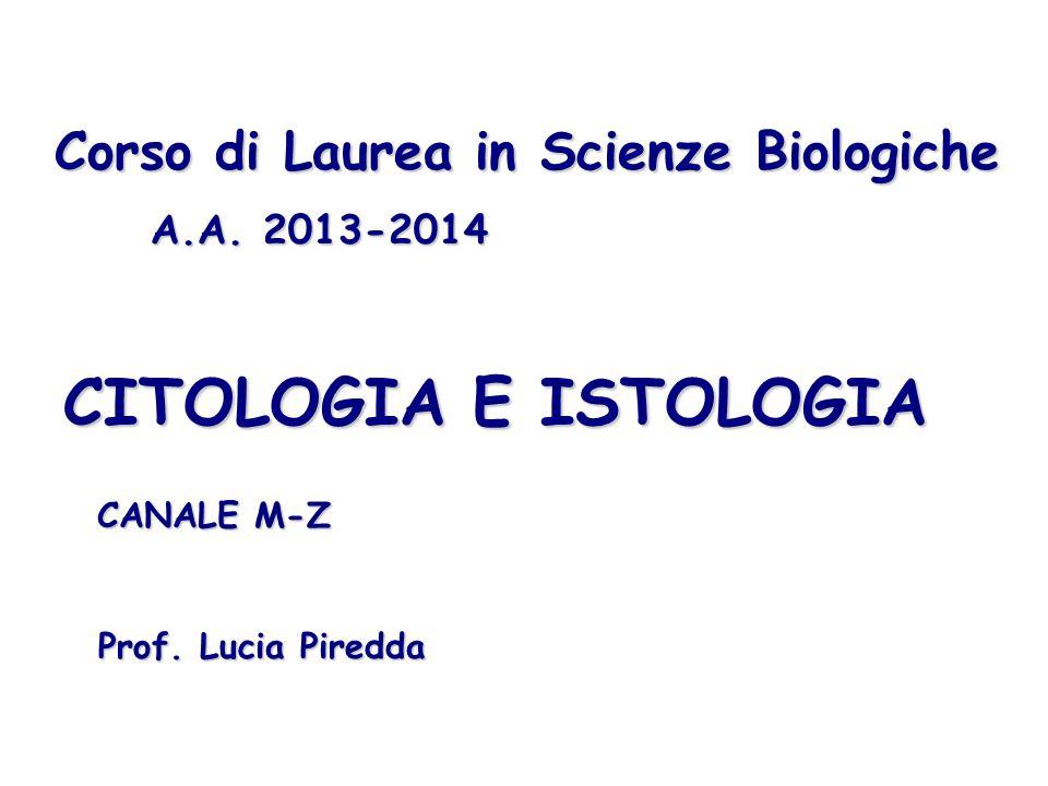 CITOLOGIA E ISTOLOGIA Corso di Laurea in Scienze Biologiche