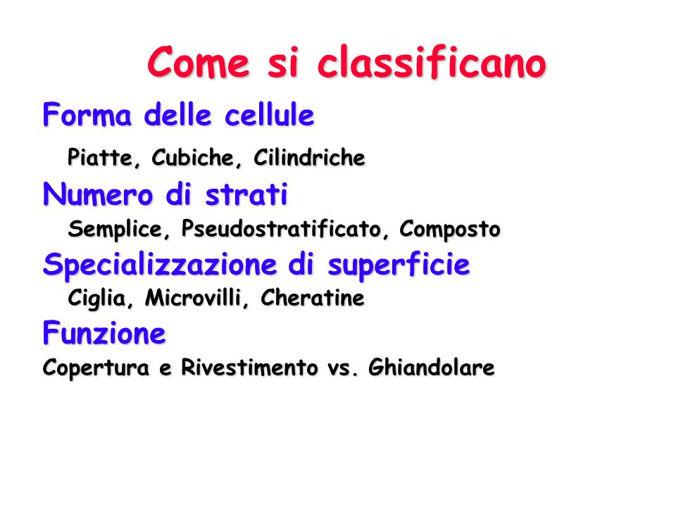 Come si classificano Forma delle cellule Piatte, Cubiche, Cilindriche