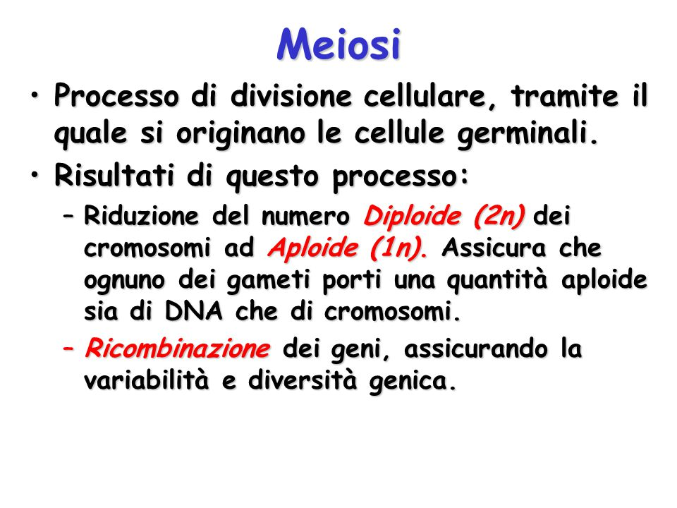 Meiosi Processo di divisione cellulare, tramite il quale si originano le cellule germinali. Risultati di questo processo: