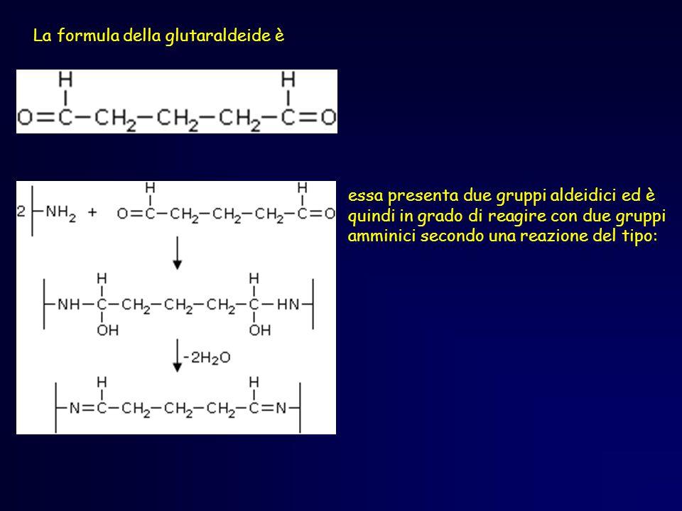 La formula della glutaraldeide è