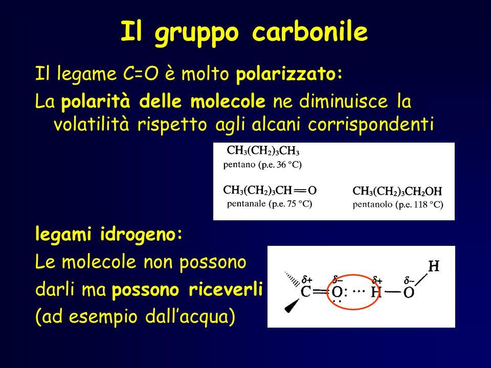 Il gruppo carbonile Il legame C=O è molto polarizzato: