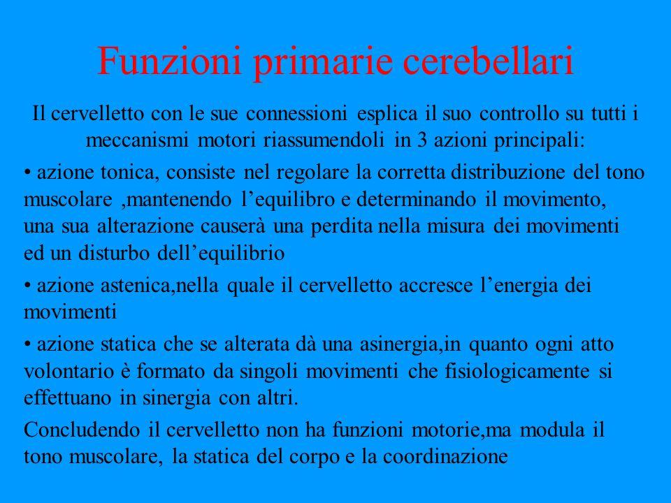 Funzioni primarie cerebellari
