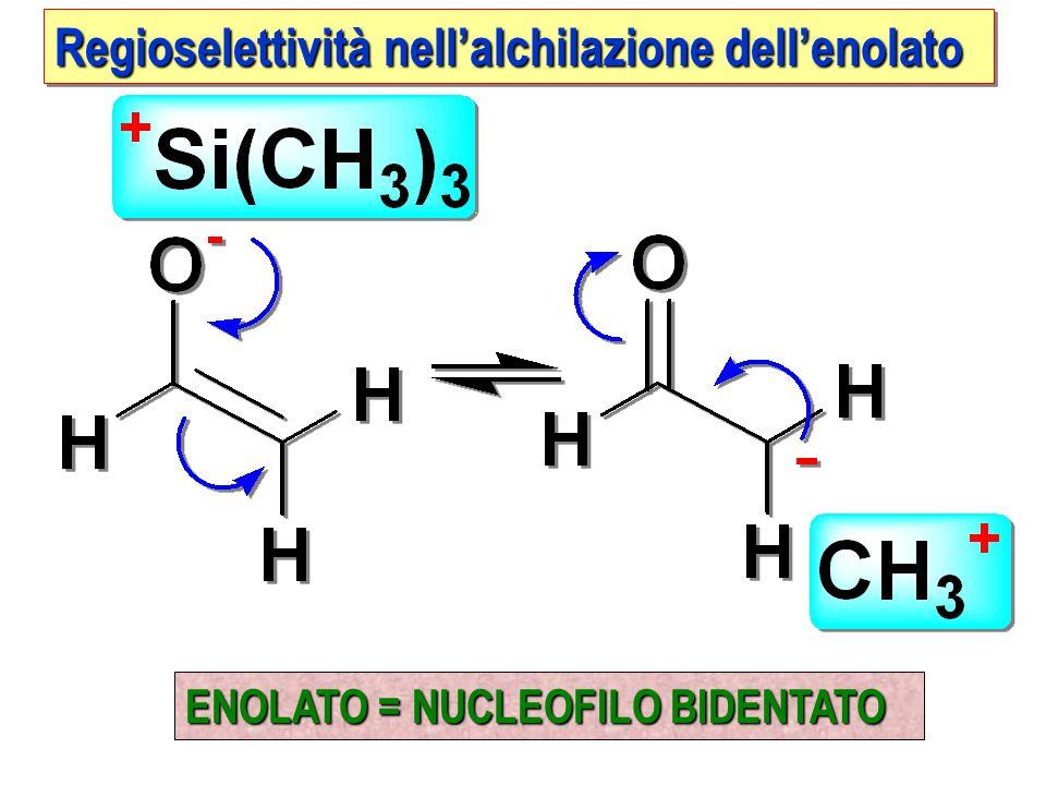 Regioselettività nell'alchilazione dell'enolato