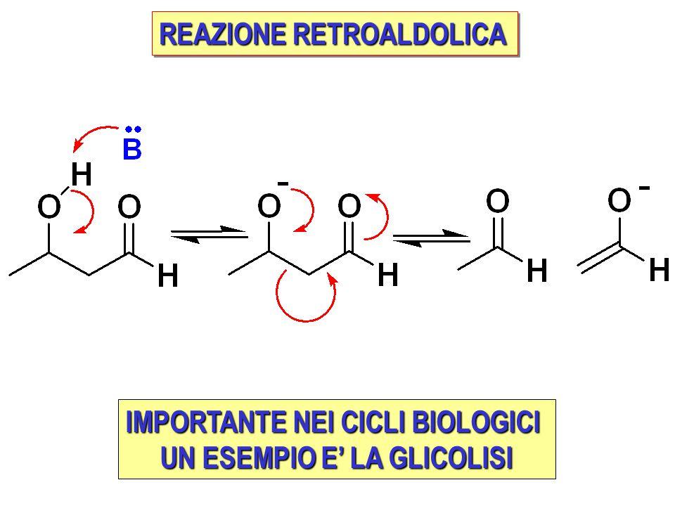 IMPORTANTE NEI CICLI BIOLOGICI UN ESEMPIO E' LA GLICOLISI