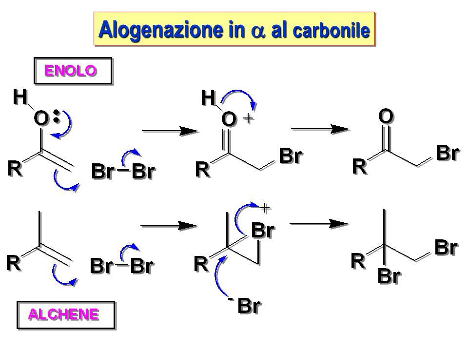 Alogenazione in a al carbonile