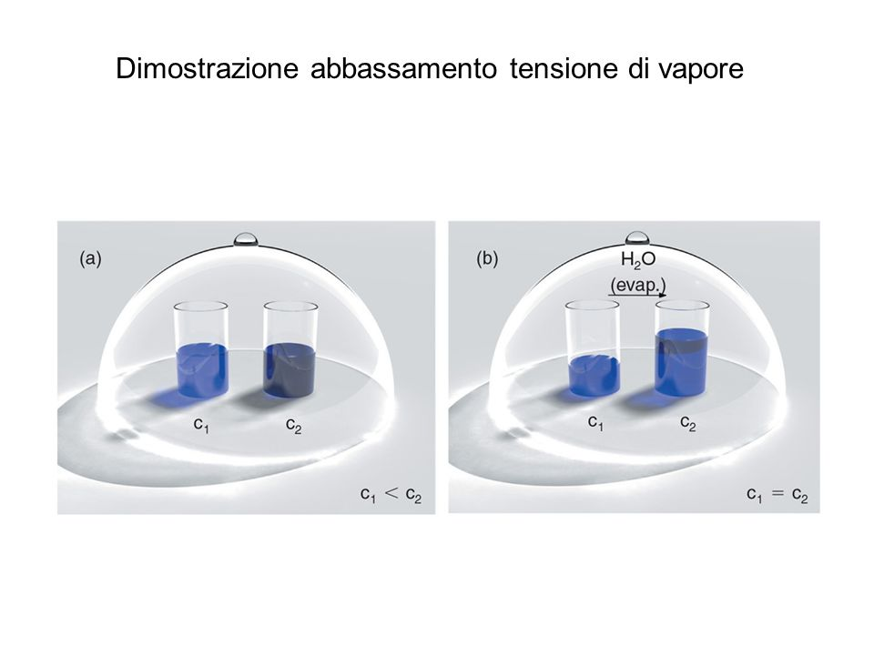 Dimostrazione abbassamento tensione di vapore