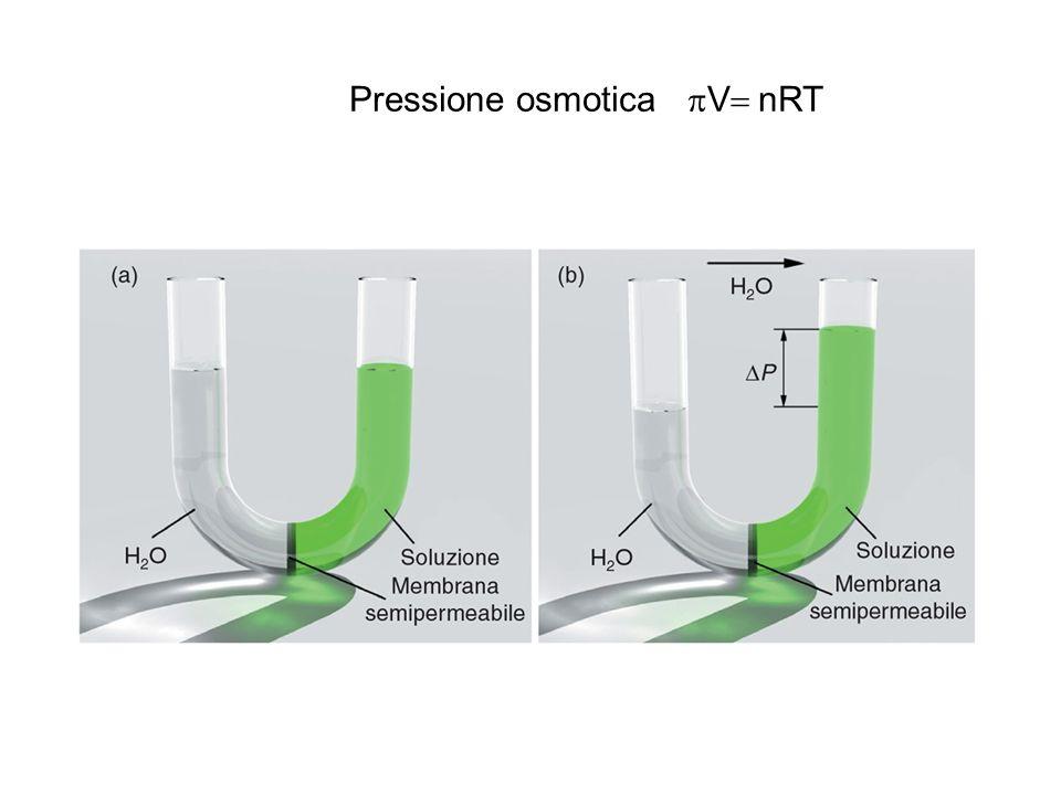 Pressione osmotica pV= nRT