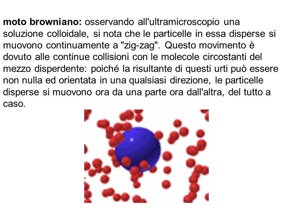 moto browniano: osservando all ultramicroscopio una soluzione colloidale, si nota che le particelle in essa disperse si muovono continuamente a zig-zag .