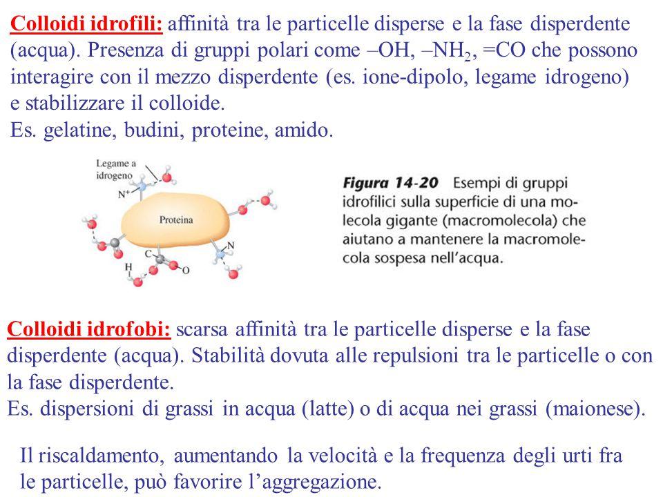 Colloidi idrofili: affinità tra le particelle disperse e la fase disperdente (acqua). Presenza di gruppi polari come –OH, –NH2, =CO che possono interagire con il mezzo disperdente (es. ione-dipolo, legame idrogeno) e stabilizzare il colloide.