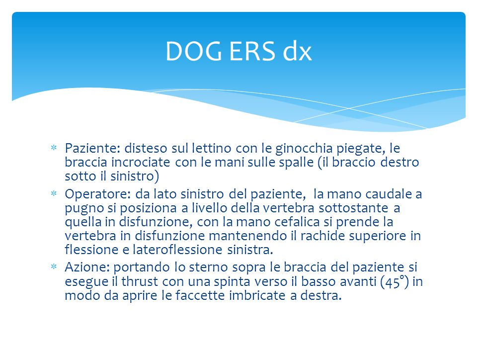 DOG ERS dx