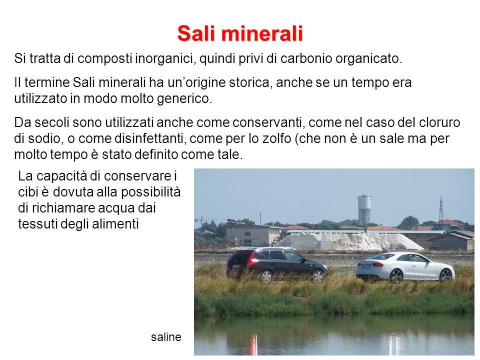 Sali minerali Si tratta di composti inorganici, quindi privi di carbonio organicato.