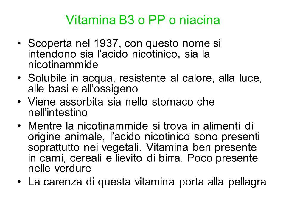 Vitamina B3 o PP o niacina