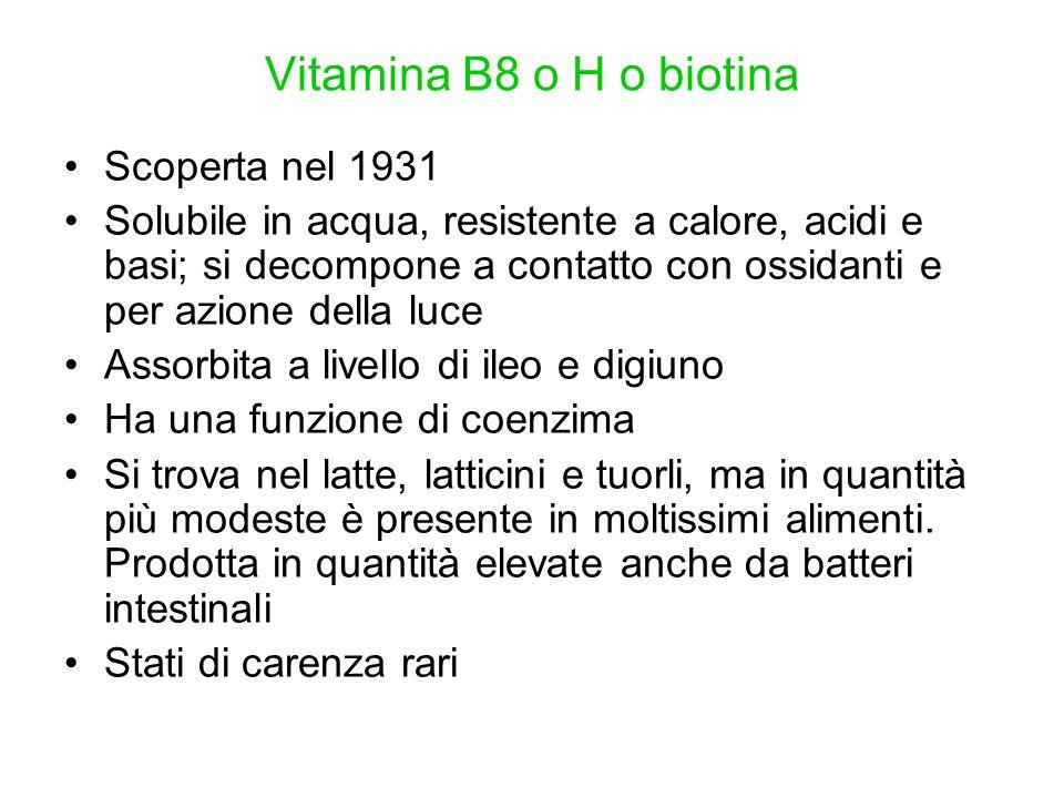 Vitamina B8 o H o biotina Scoperta nel 1931