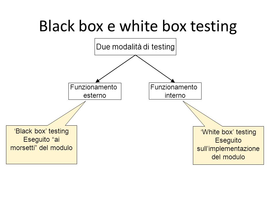 Black box e white box testing