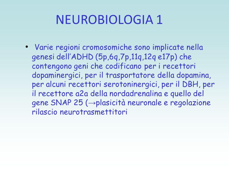 NEUROBIOLOGIA 1