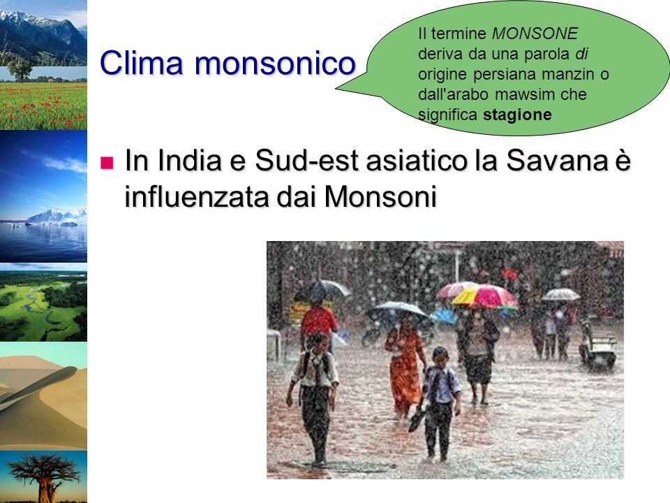 Il termine MONSONE deriva da una parola di origine persiana manzin o dall arabo mawsim che significa stagione