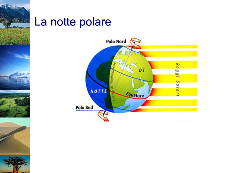 La notte polare