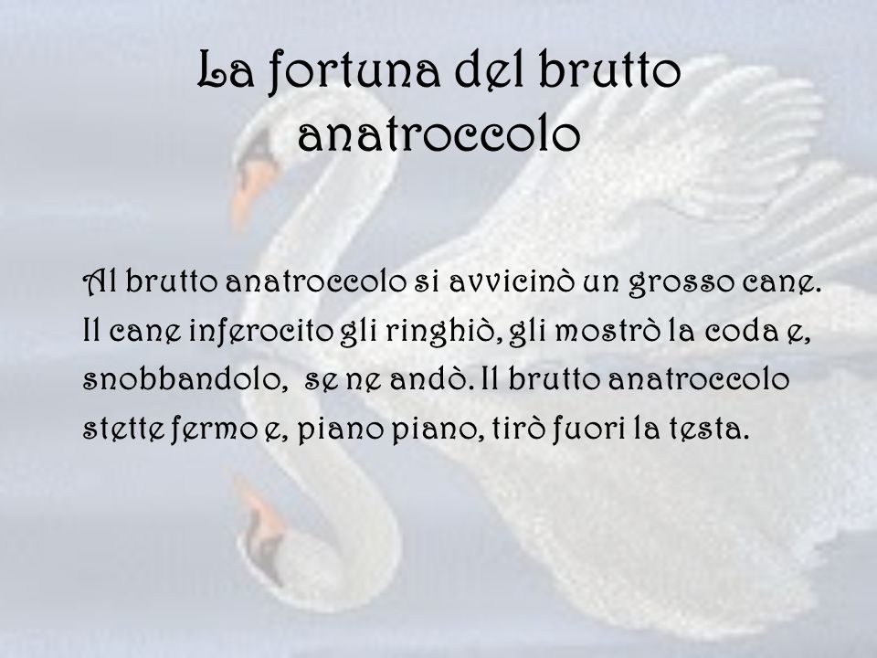 La fortuna del brutto anatroccolo