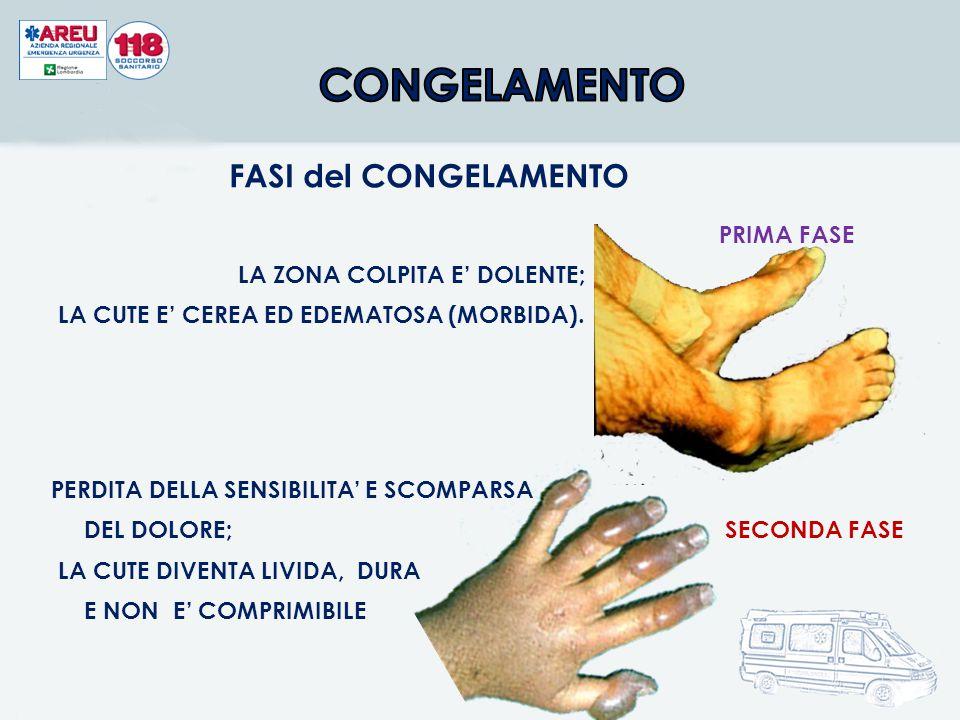 CONGELAMENTO FASI del CONGELAMENTO PRIMA FASE