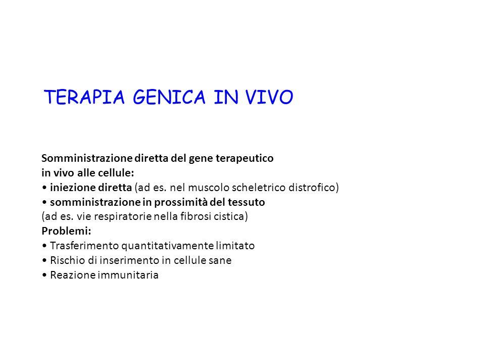 TERAPIA GENICA IN VIVO Somministrazione diretta del gene terapeutico