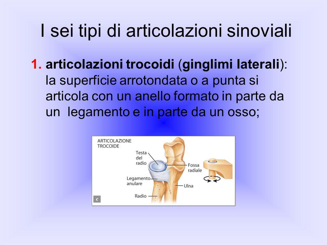 I sei tipi di articolazioni sinoviali