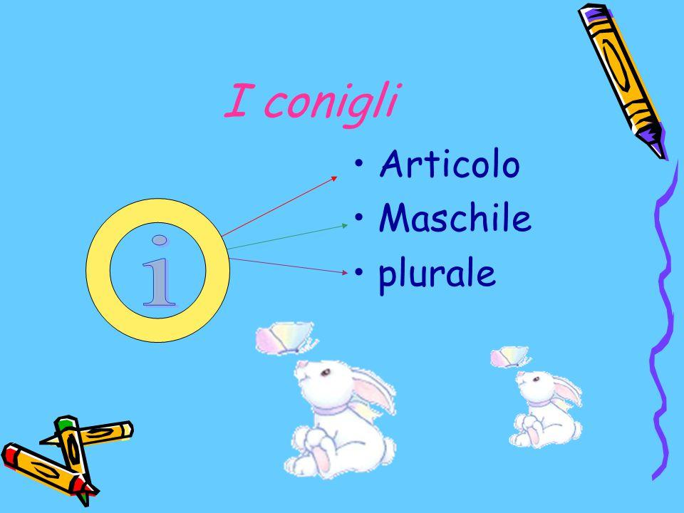 I conigli Articolo Maschile plurale i
